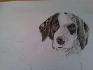 Ritratto di cane - Olio su cartoncino Dog portrait - Oil on water paper