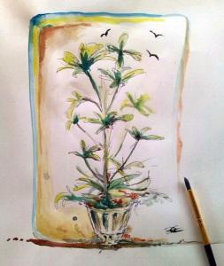 Shefflera Arboricola -Acquerello su carta